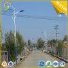 Éclairage routier solaire élevé de C.C 120W de puissance pour la route