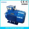 Motor eléctrico de la inducción Squirrel-Cage asíncrona trifásica de la CA de Ye3 5.5kw-6p para la bomba de agua, compresor de aire
