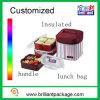 Kundenspezifischer Isolieroxford-Mittagessen-Kühler-Beutel-Picknick-Kühler-Beutel