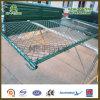 Rete fissa provvisoria rivestita di Construcation di collegamento Chain della polvere verde di Gark