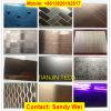 Het Decoratieve Blad van uitstekende kwaliteit van het Roestvrij staal