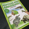 Hermosos libros de dibujos animados para niños