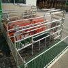 암퇘지를 위한 직류 전기를 통한 돼지 새끼를 낳는 크레이트