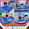 Sale chaud Giant Inflatable Water Slide pour Adult, Inflatable Water Slide avec Pool, Water Slide Slip N Slide