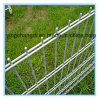 Garden Twin Wire Mesh Fence (China manufacturer with ISO)