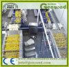 機械を作るステンレス鋼の砂糖漬けのフルーツ