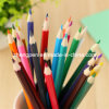 24 colores Wood Pencils con Eraser Gift Box
