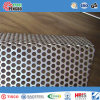 Feuille perforée galvanisée d'acier inoxydable