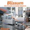 턴키 서비스 주스 음료 생산 Line/Plant/System/Equipment