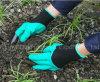 左及び右のプラスチック爪の園芸手袋の庭の掘る手袋