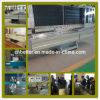 Butyl Machine van de Extruder om tot Dubbel Glas/Dubbel Glas Butyl Uitdrijvende Machine Te maken