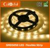 Illuminazione di striscia di volt LED di alta qualità DC12V SMD5050 24