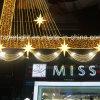 ショッピングモールのホテルLEDのカーテンの装飾ライト