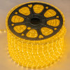 Luz de tira vendedora caliente de AC110V o de 220V los 8W/M SMD5050 LED