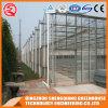 De Serre van het Blad van het Polycarbonaat van het Profiel van het Aluminium van het Frame van het Staal van de multi-spanwijdte voor Groente