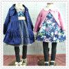 Vestido Junoesque do outono da coleção ajustado para meninas das crianças
