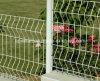 Acoplamiento de alambre soldado cubierto potencia que cerca para el camino y el jardín