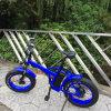 20inch 48V/20.4ah 뚱뚱한 타이어 E 자전거