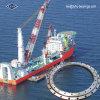 Vuotamento Ring Bearing per Shipboard Cranes (133.45.2800)