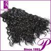 長い寿命の容易な心配の深いカールのバージンのブラジルの毛の束