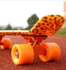 Transparente Penny Skateboard 2012 neue Skateboard Individuelle Penny Skateboard