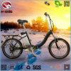 elektrisches faltendes Fahrrad 250W für Erwachsenen