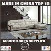 2017 تصميم جديد أريكة قطاعيّ مع [شيس]