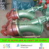 Проект генератора 500kw 1000kw EPC Pelton в Sri Lanka