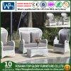 Sofá sintetizado al aire libre con los muebles de la rota del vector de té fijados (TG-1505)