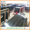 Polished popolare Uba Tuba Granite Laminate Vanity Tops per Medio Oriente