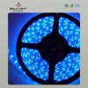 Tira flexible del LED (SL-B1213B60)