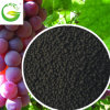 100 % Organic Fertilizer Algas Granular con NPK