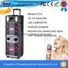 D-210 conjuguent  haut-parleur rechargeable stéréo de PA du karaoke 10
