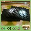 Caucho de espuma negro de la insonorización de Isoflex