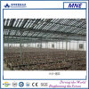 Macrolink Agricultural PV System con Thin Film Solar Modules