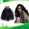 Braziliaans Maagdelijk Haar, de Kroezige Uitbreiding van het Krullende, het Weven Afro Menselijke Haar