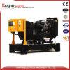 Мощный электрический генератор! Генератор Yangdong 25kw/31.25kVA звукоизоляционный молчком для дома