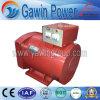 Generador síncrono trifásico del A.C. de la STC de la buena calidad 40kw