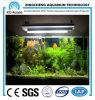 Aquarium van het Perspex van 100% het Materiële Acryl