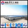 Capannone della costruzione della struttura d'acciaio di Pre-Ingegneria (SSW-14034)