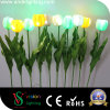 빛이 LED 시뮬레이션에 의하여 꽃이 핀다