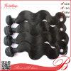 5A Grade Unprocessed Virgin 브라질 Hair Weave