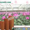 Garniture fixée au mur de refroidissement par évaporation pour des fleurs plantant des serres chaudes