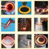 Nuova macchina termica di induzione magnetica di circostanza (JL)