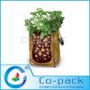 La patata crece bolsos en el crecimiento del plantador del jardín