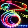 (IP65, IP68) luz flexible impermeable de la cinta de 5050 SMD LED RGB