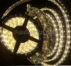 SMD LED 지구 램프