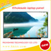 15.6 Inch Replacement LCD EDV Display Monitor Lp156wf4-Spl1 1080P