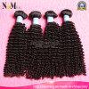 100%の優れたインドのねじれた巻き毛のバージンの人間の毛髪の製品