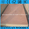 Bintangor Commercial Plywood para Furniture y Decoration